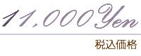 11000円(税抜)